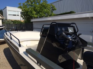 QS 440 fish bj 2012 1